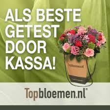 webshop topbloemen